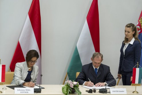 Hungary To Tackle Illegal Migration post's picture