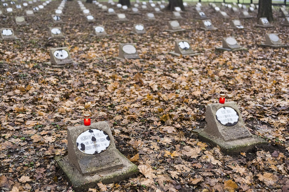 Hungary Commemorates Victims Of Both World Wars post's picture