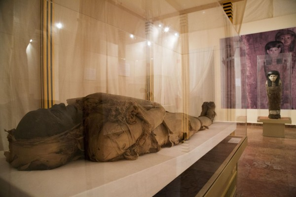 Egypt Of Pharaohs: Record-Breaking Exhibition Sees 114 000 Visitors In Southern City post's picture