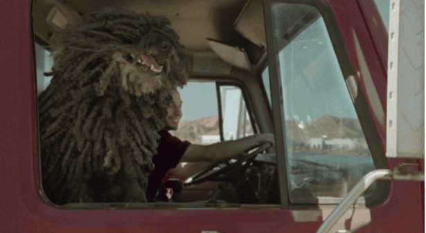"Hungarian ""Mop Dog"" Puli Stars In New Dr Pepper Ad post's picture"