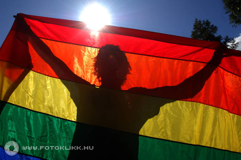 Gay Marriage: The Rainbow Flag Flies High In The West, But What About Central Europe? post's picture