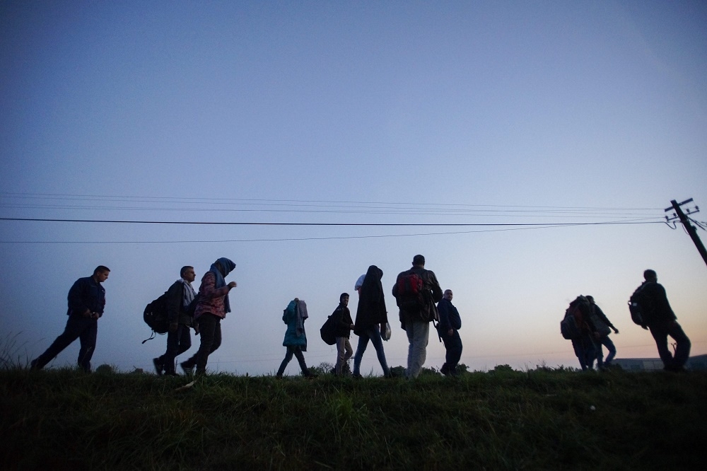 Increasing Pressure: Over 1000 Migrants Attempted To Cross Hungary's Border Since Tuesday post's picture