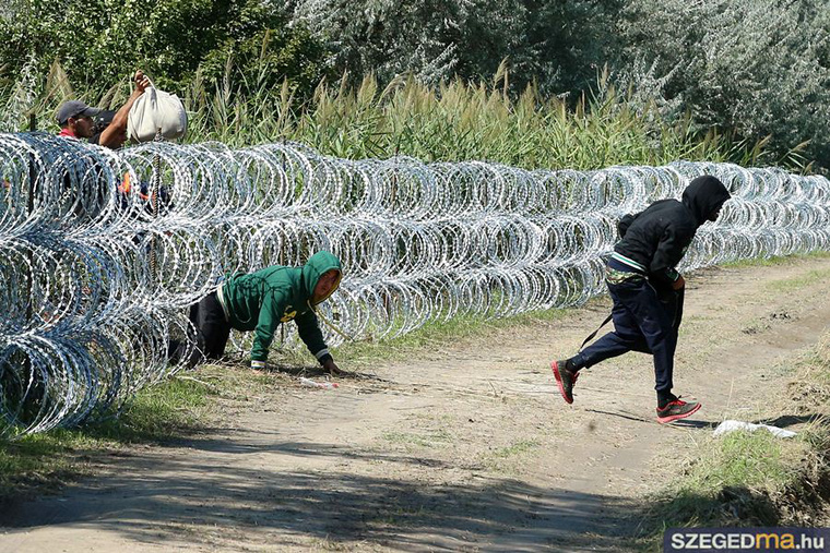 Migrants Cut Through Temporary Border Fence Once Again post's picture