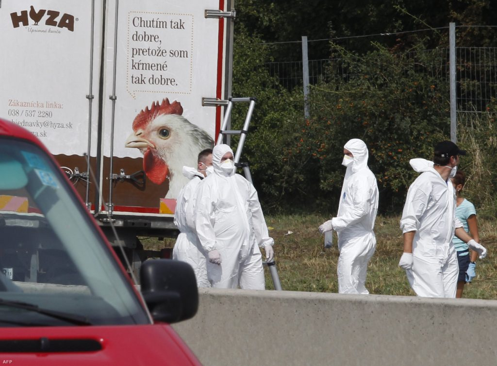 Four Get Life Sentence in Austrian Migrant Lorry Tragedy Case post's picture