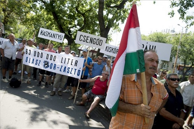 "Hungarian Winemakers Demonstrate Against Import Of ""Counterfeited"" Budget Wines At Italian Embassy post's picture"