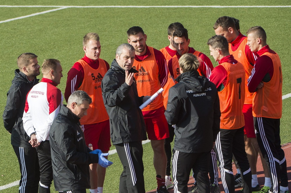 Football: Hungary's Head Coach, Players Anticipate Tough Norway Clash – Match Preview! post's picture