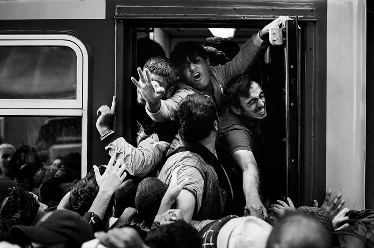 "Migrant crisis (individual): ""Crisis at the Keleti railway station"" by Árpád Kurucz (Magyar Idők)"