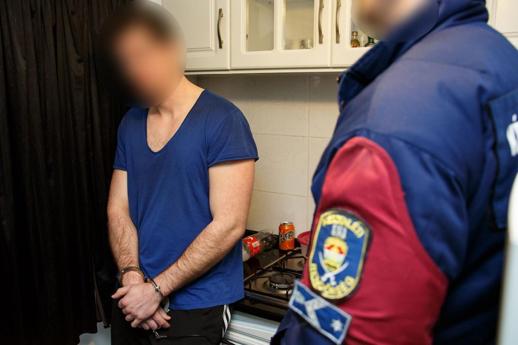 Hungarian Police Bust Criminal Gang That Made Millions By Trafficking Prostitutes To France – Video! post's picture