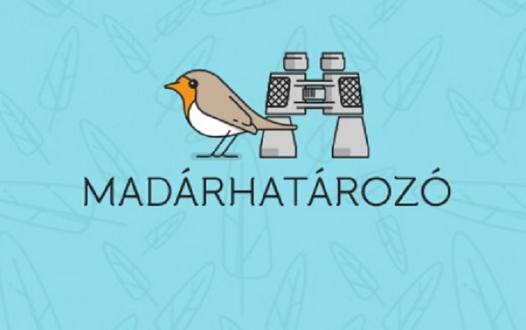 Do You Have Cheeping Birds In Your Garden? Here Is A Useful Hungarian App To Specify Them post's picture