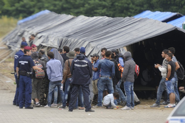 "National Security Chief Warns Of ""Increasing Violence"" Among Migrants In Hungary post's picture"