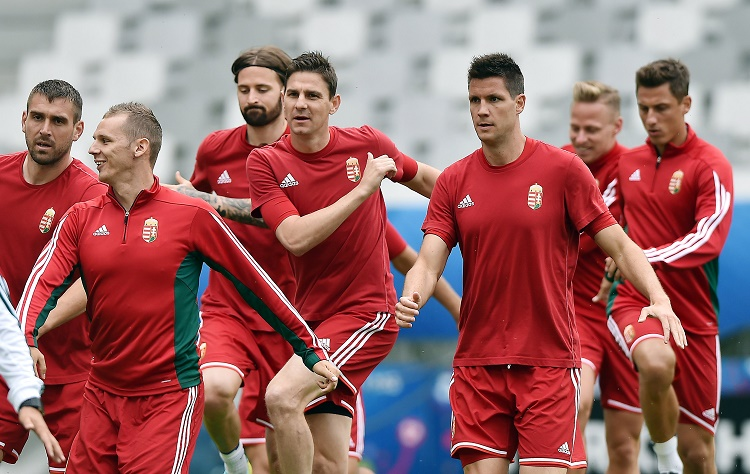 """Euro 2016 Performance Not Enough"", Hungary Playmaker Gera Says Ahead Of Switzerland Game post's picture"