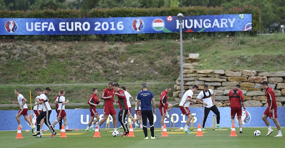 Euro 2016: Iceland versus Hungary – Match Preview! post's picture