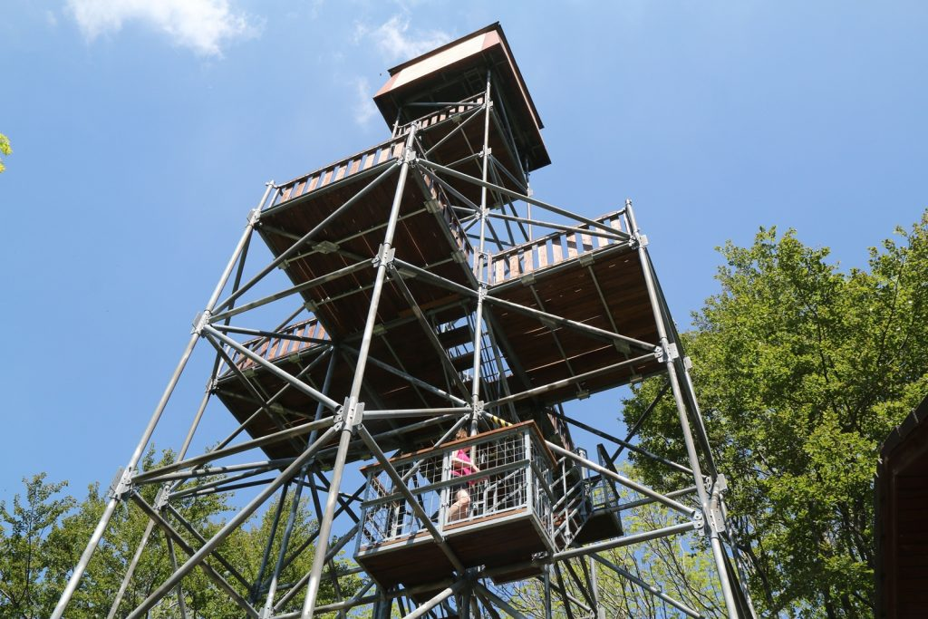 Hungary's Highest Lookout Tower Reopens To Tourists After Years Of Closure post's picture