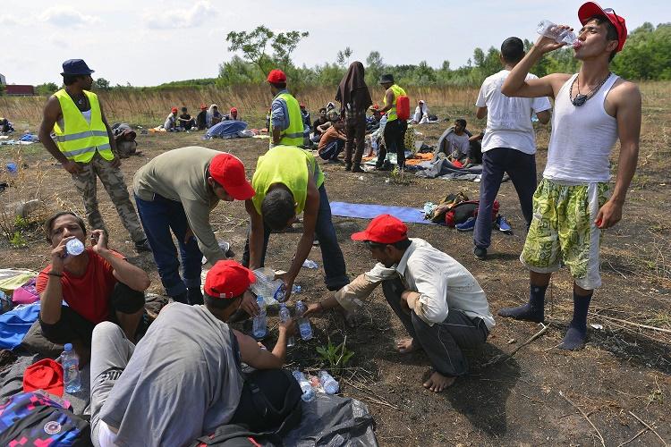 Horgos, 2016. július 25. Szerb rendõrök felügyelnek éhségsztrájkot folytató migránsokra a szerb-magyar határ közelében Horgosnál 2016. július 25-én. Az elõzõ napon a helyszínre 130 migráns érkezett gyalog Belgrádból, akik a tranzitzóna közelében éhségsztrájkot folytatva várják, hogy Magyarország megnyissa a határt elõttük. MTI Fotó: Molnár Edvárd