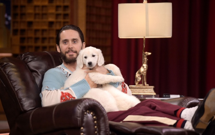 Hollywood Movie Stars In Town – Jared Leto Is Coming To Budapest Too post's picture