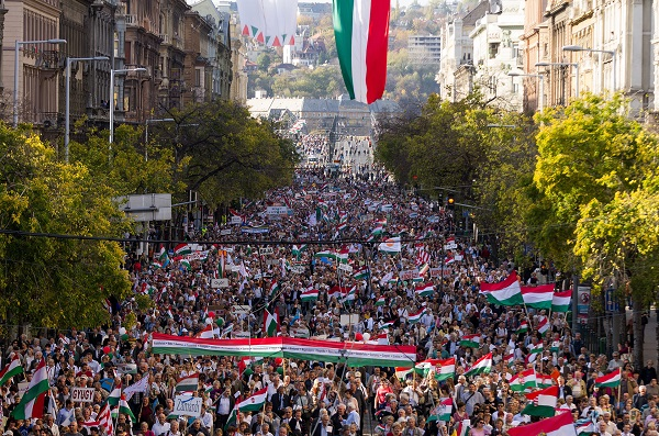 Pro-Gov't Org's New Peace March of 'Unprecedented Size' Underway post's picture