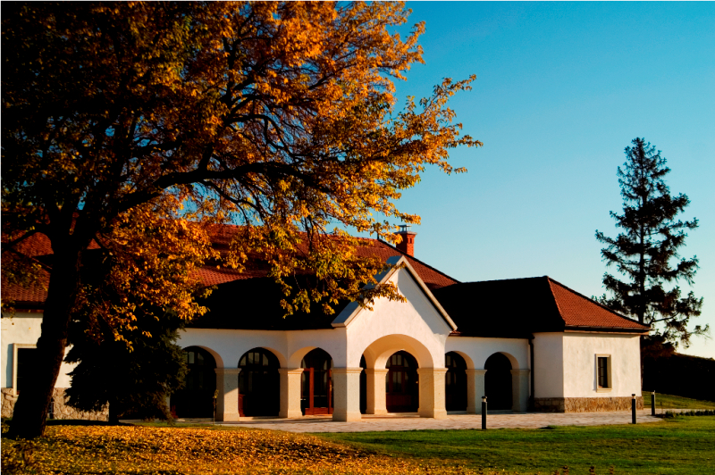 """Tokaj's Patricius Winery Named Hungary's """"Cellar of The Year"""" In 2016 post's picture"""