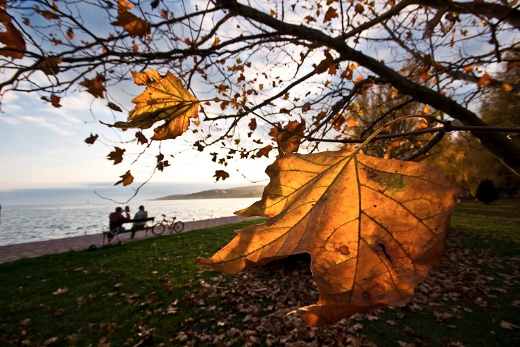Even If Autumn Is Here We Will Not Starve – Restaurants Are Open In The Fall At Lake Balaton post's picture
