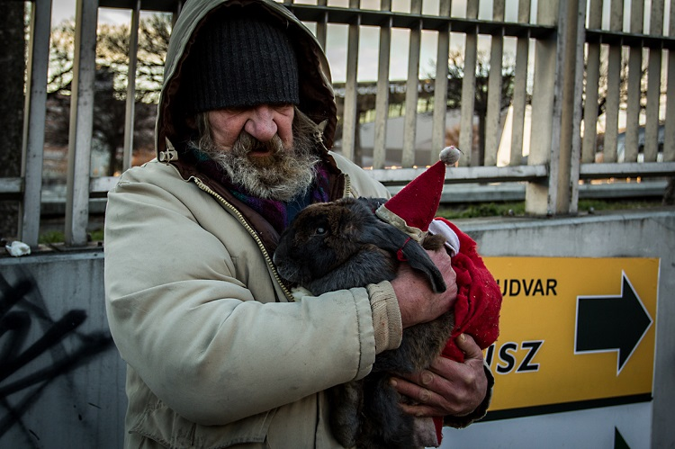 As Dangerously Cold Weekend Approaches, Many Homeless Remain on the Street in Hungary post's picture