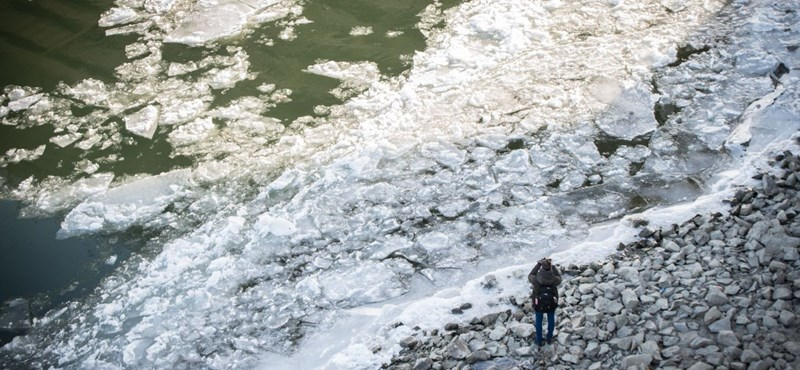 Icy Tsunami Is Coming – Scary Prospects About Flooding River Tisza post's picture