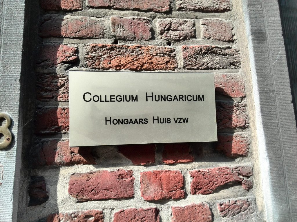 Over 10.000 Hungarians Studying Abroad, Study Finds post's picture