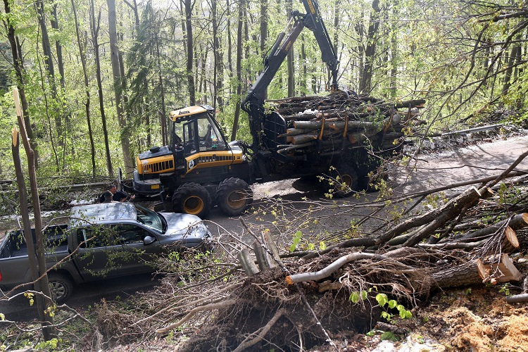 April Storms Caused $1.8 Million USD in Damage in Hungary's Bükk and Zemplén Mountains post's picture