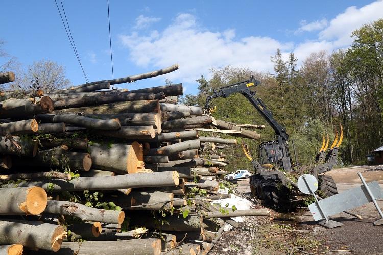 Répáshuta, 2017. április 24. Erdészek dolgoznak a néhány nappal ezelõtti viharban és hóesésben útra dõlt fák eltakarításán Répáshuta közelében 2017. április 24-én. MTI Fotó: Vajda János