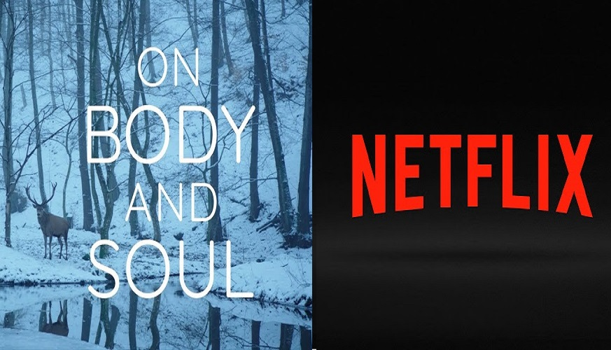 Award-Winning Hungarian Film 'On Body and Soul' Headed to Netflix Next Year post's picture