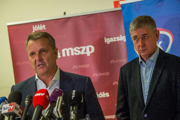 Elections 2018: MSZP, DK Reach Deal On Coordinated Nominations In Individual Constituencies post's picture
