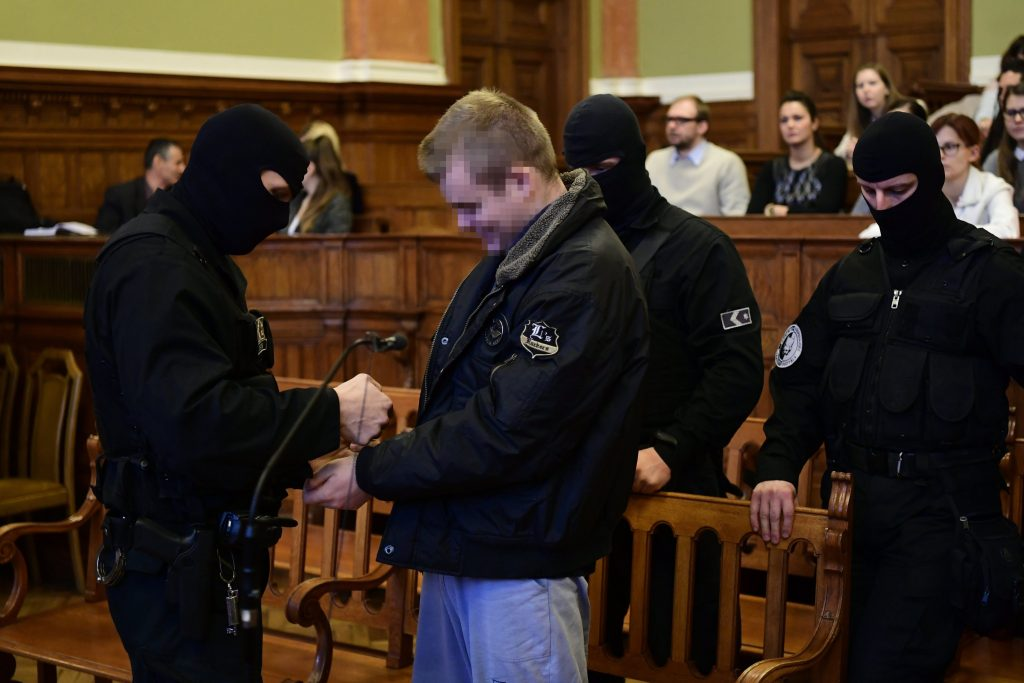 "Trial of the ""Teréz Körút Bomber"" Has Begun Today post's picture"
