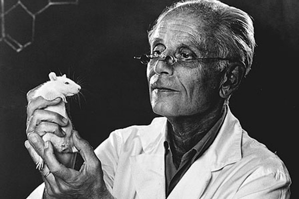 """János Selye: The Hungarian Scientist Who Defined """"Stress"""", Yet Was Denied a Nobel Prize post's picture"""