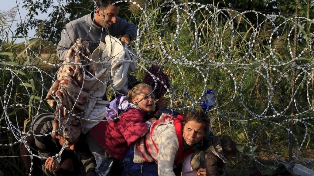 Eurostat: Hungary Took in 1,300 Refugees Last Year post's picture