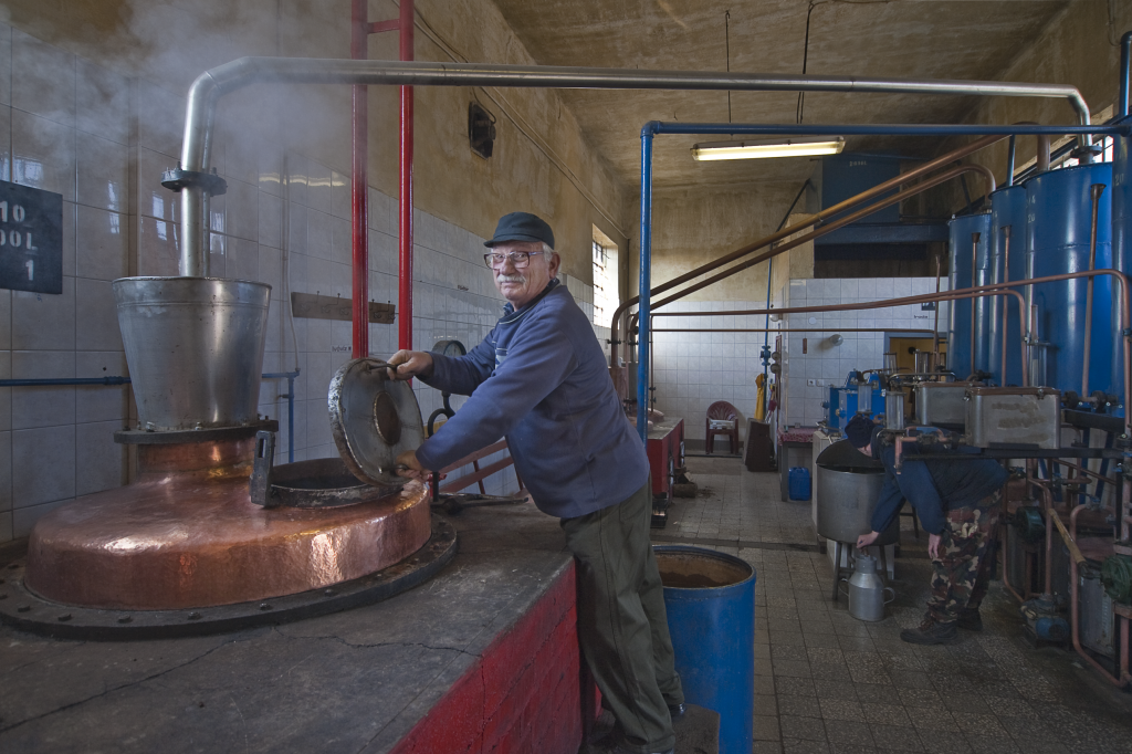Farm Ministry Launches Website Dedicated to Pálinka Fruit Brandy post's picture