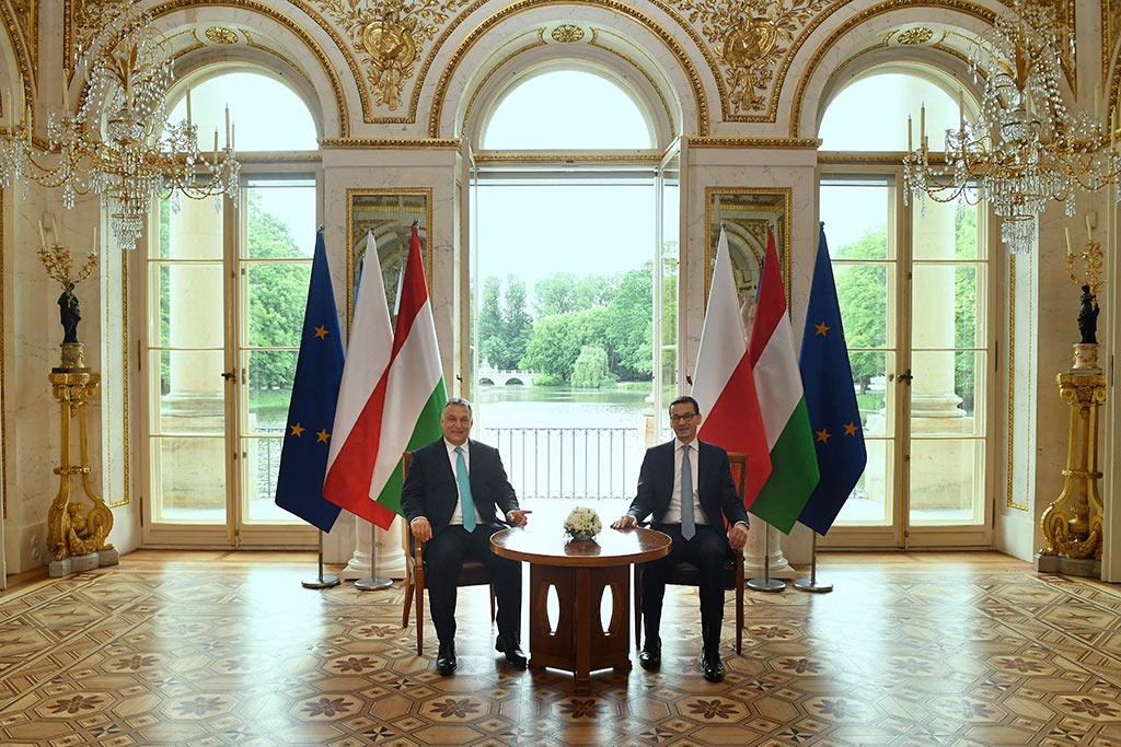 Hungary, Poland 'Support Strong Europe' post's picture