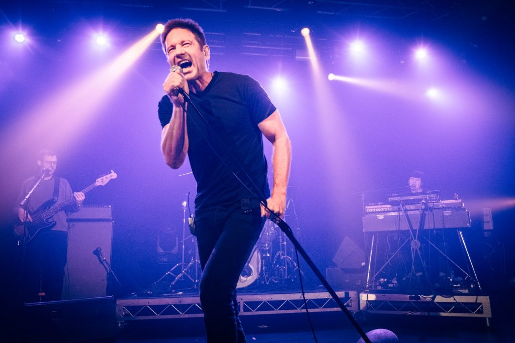 X-Files Actor David Duchovny Announces Budapest Concert post's picture