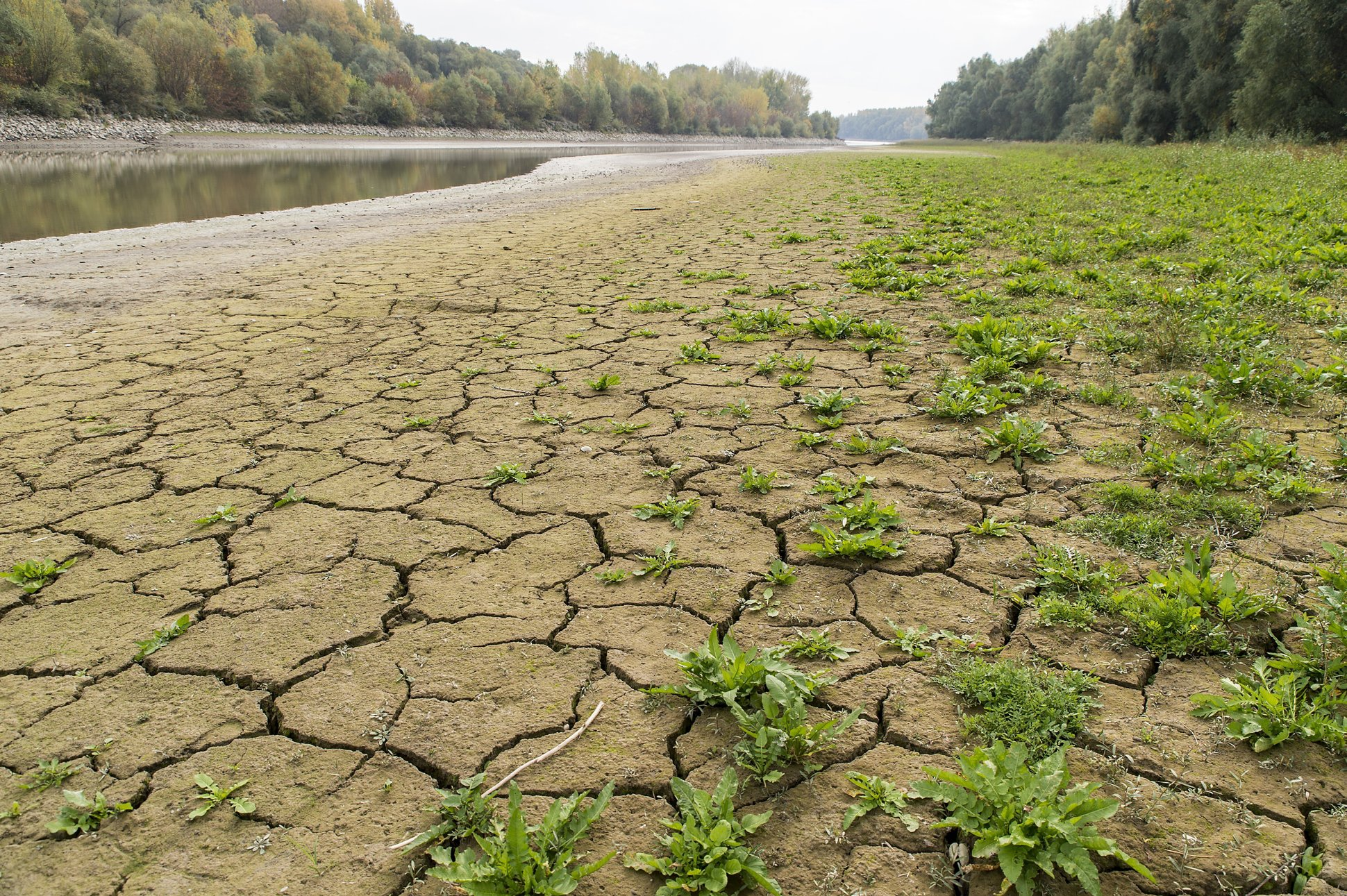 Danube Level at Record Low, Continues to Drop post's picture