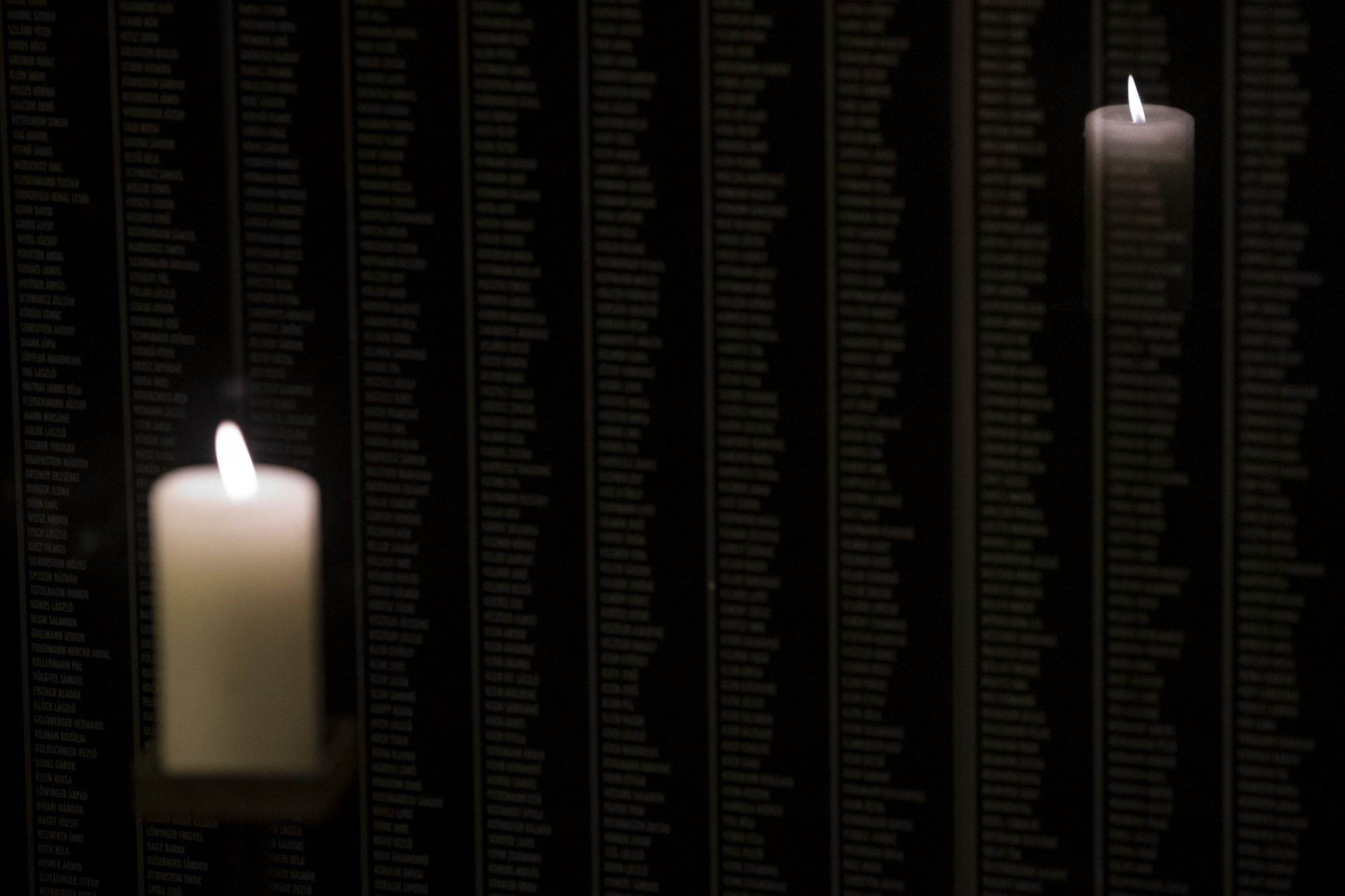 Ruling and Opposition Parties Mark Holocaust Memorial Day post's picture