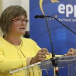 Fidesz MEP Urges Stronger EC Support for Protection of Ethnic Communities