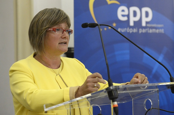 Fidesz MEP Urges Stronger EC Support for Protection of Ethnic Communities post's picture