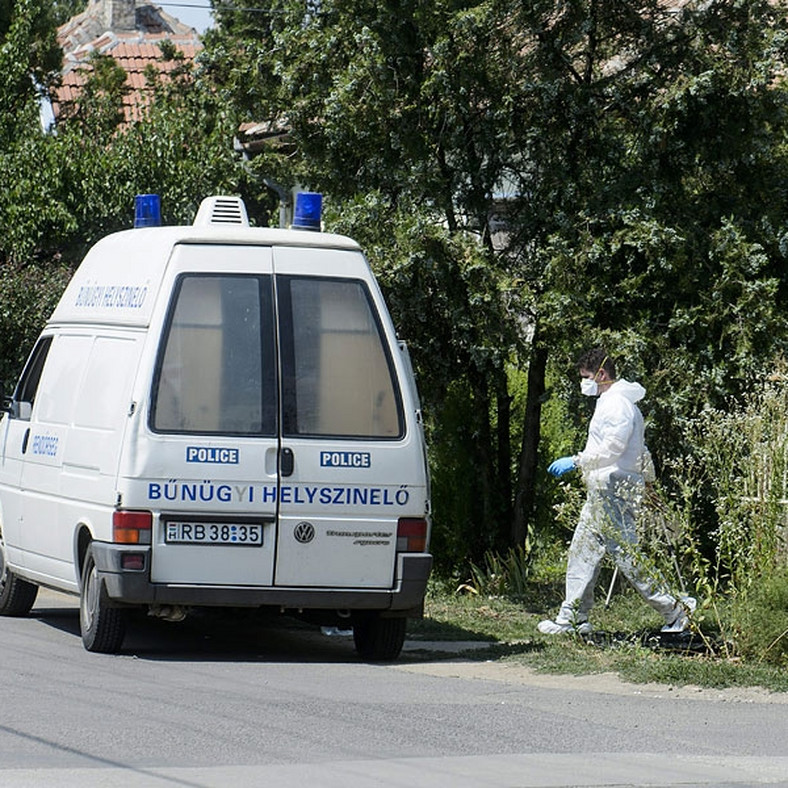 100 or 200 Murders per Year? Something is Wrong with Hungary's Homicide Statistics post's picture