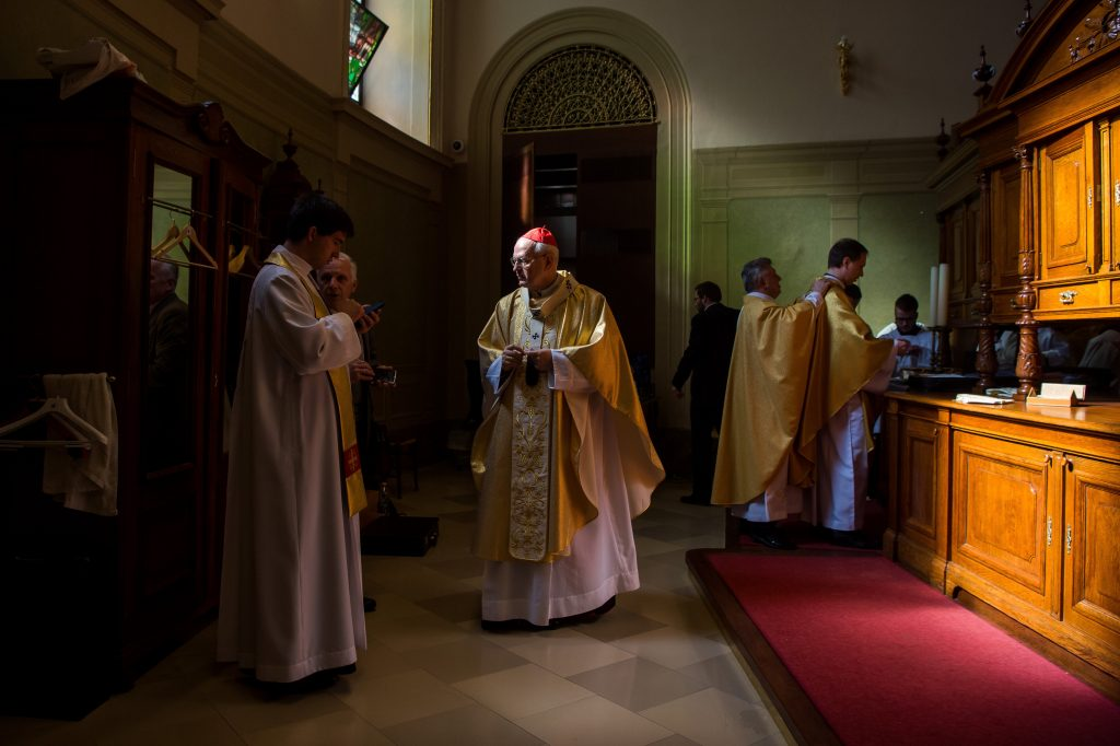 'We Must Shape Life in the Spirit of the Gospel', Cardinal Erdő Says post's picture