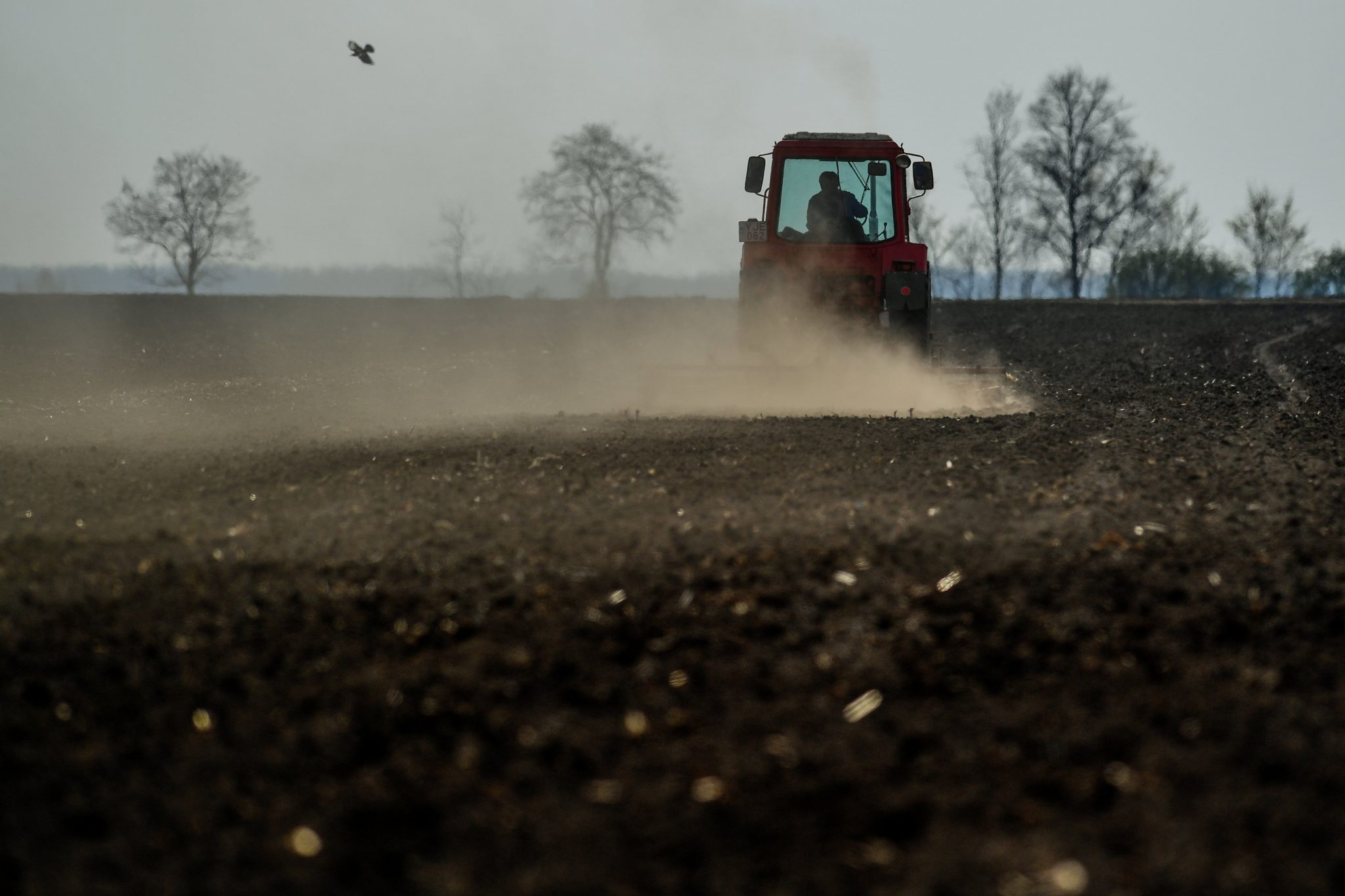 200,000 Farmers Sign Petition against Brussels in Support of Fair Subsidies post's picture