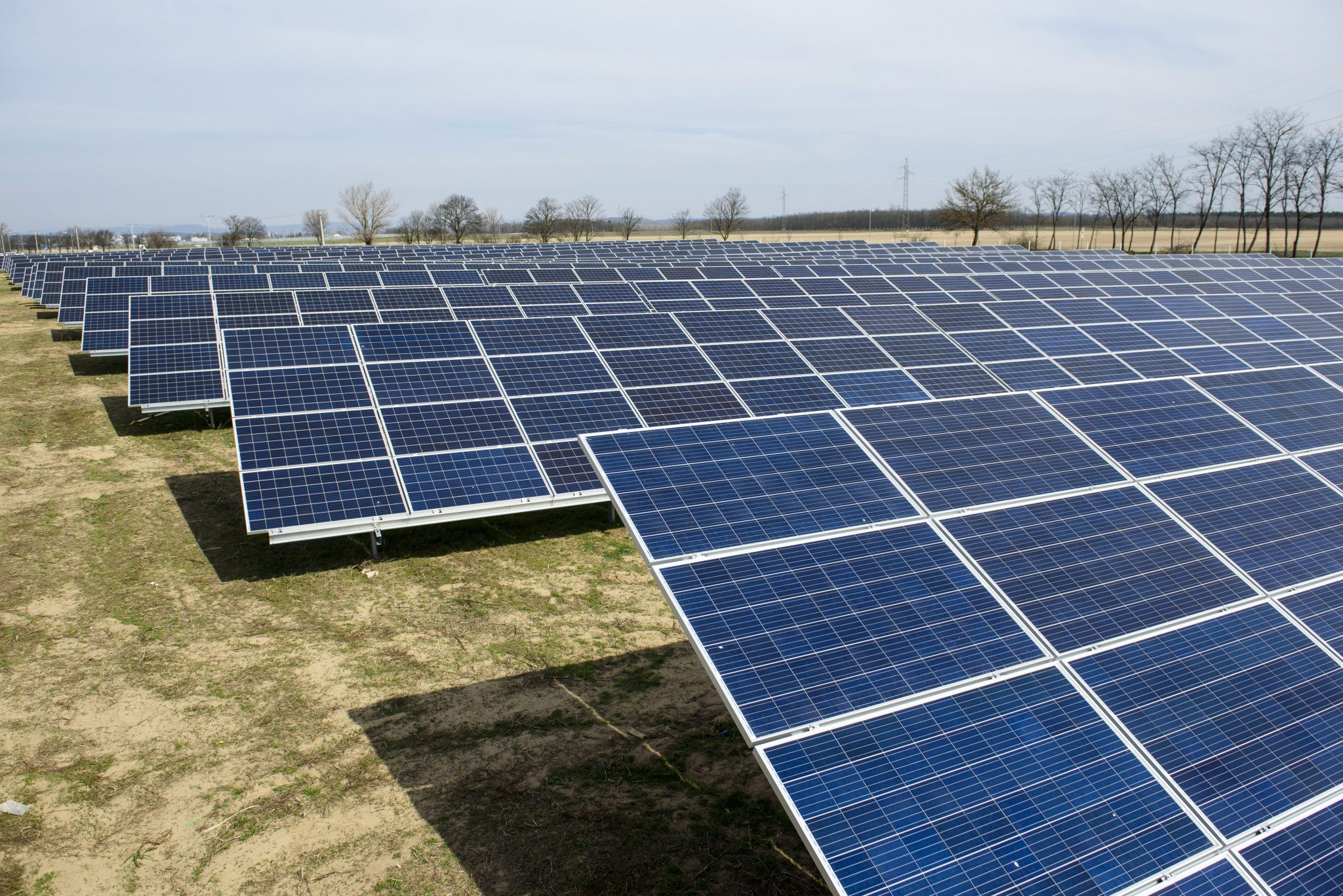Solar Energy Use Doubles in 2019