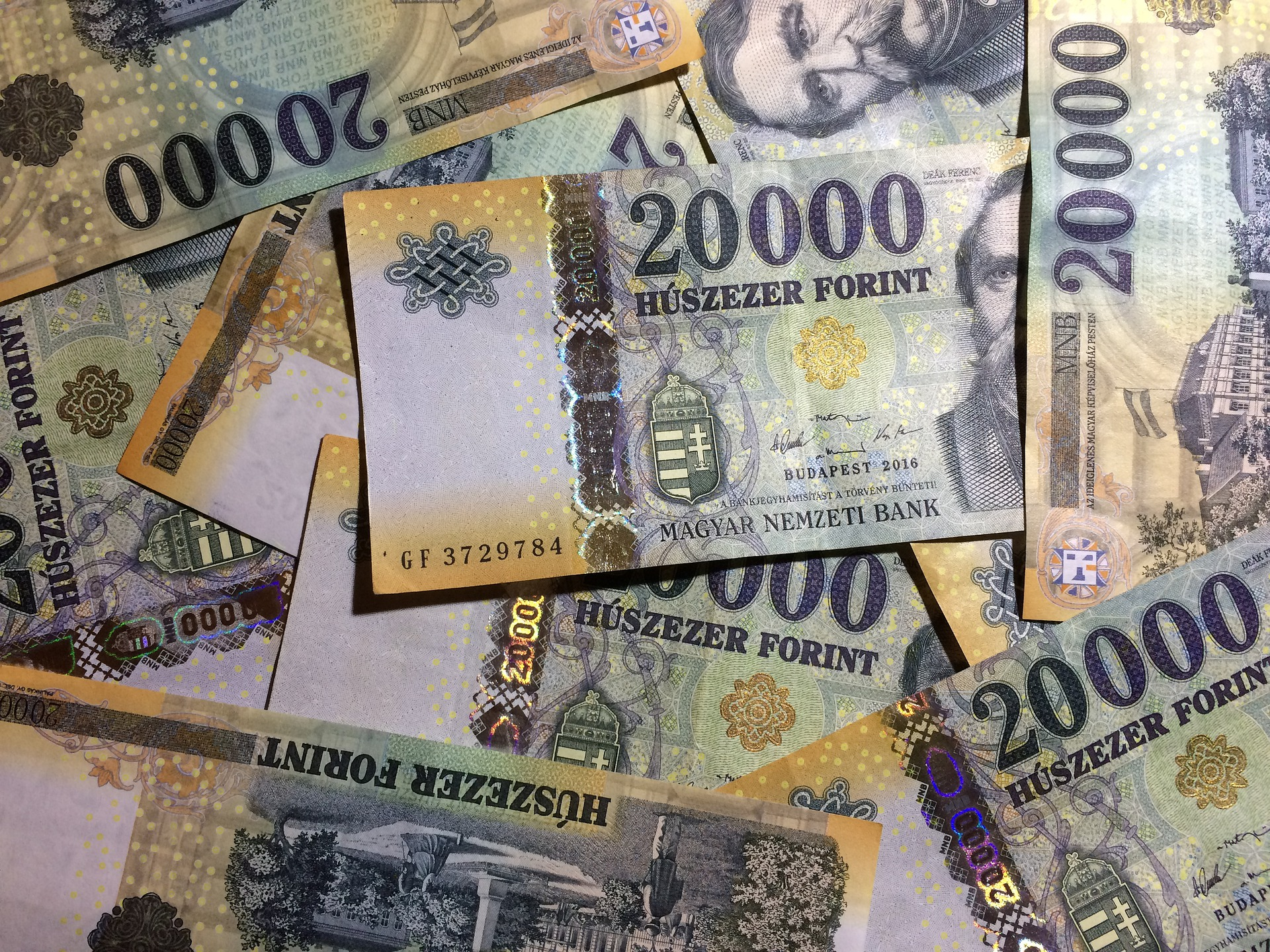 Hungary Gross Wages up 12 pc post's picture