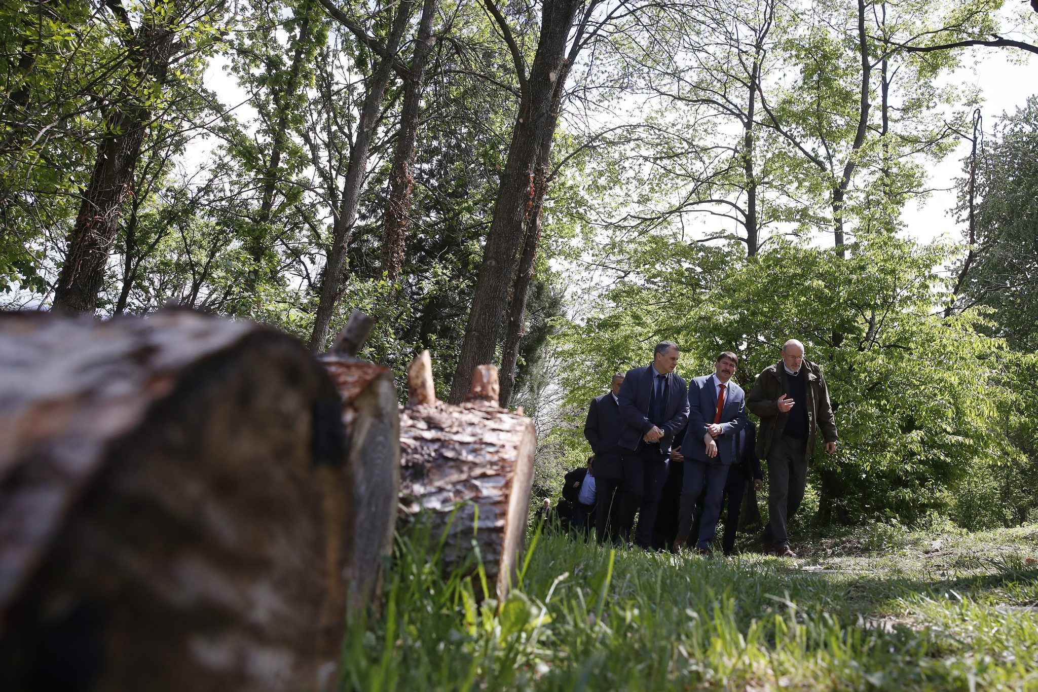 President Áder: Hungary Doubles Forests in Past 100 Years post's picture