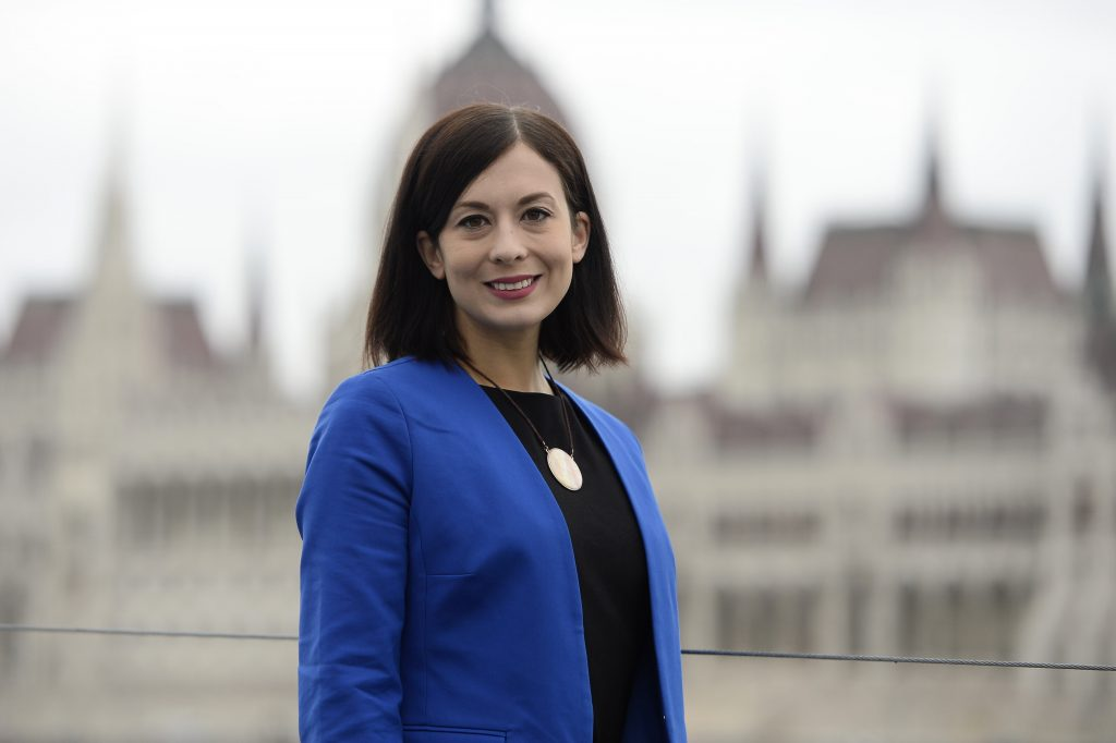 Momentum EP Program: Focus on Younger Generations, EU Integration post's picture