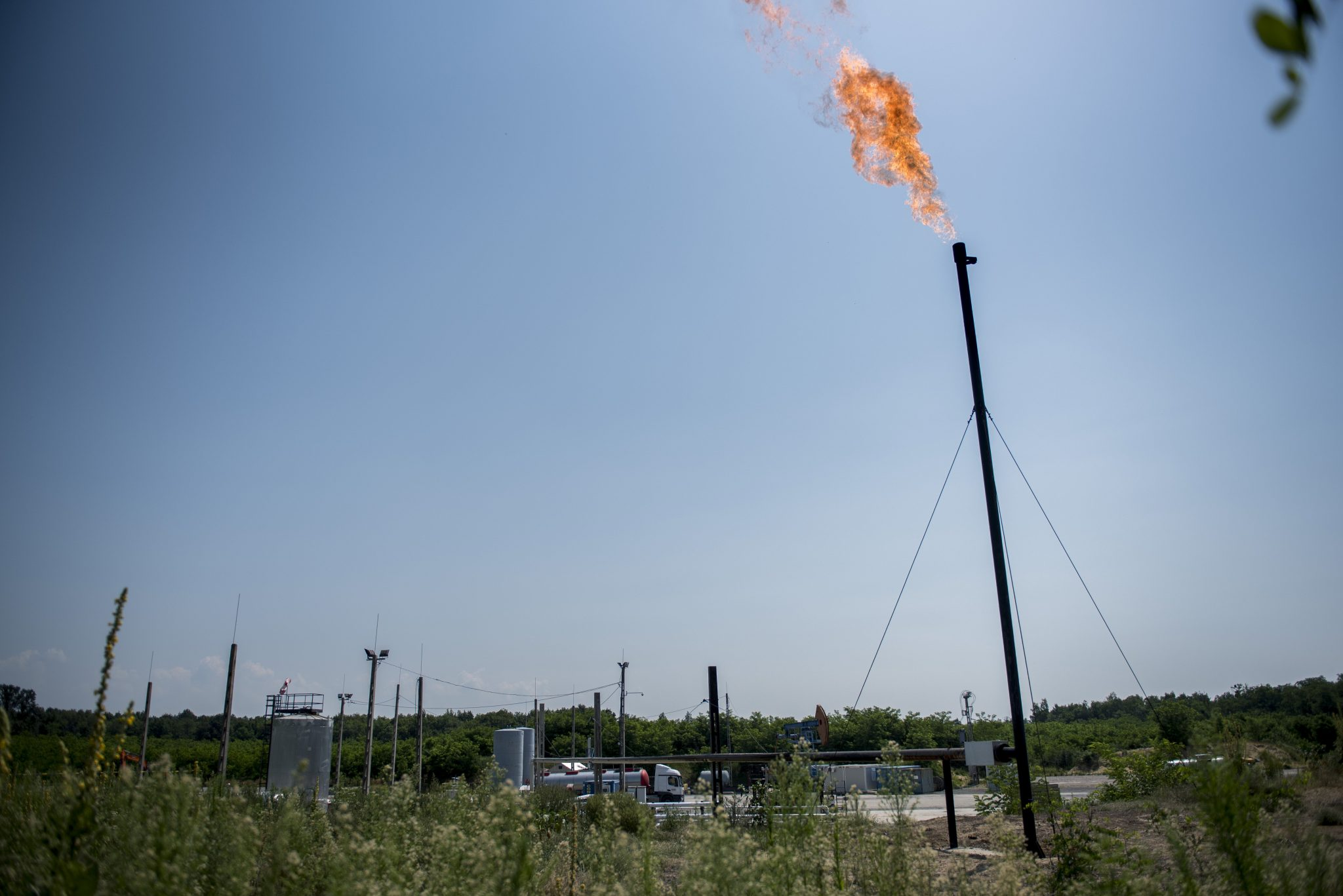 LMP Protests Oil, Gas Exploration Plans of Fields with 'Negligible' Potential post's picture