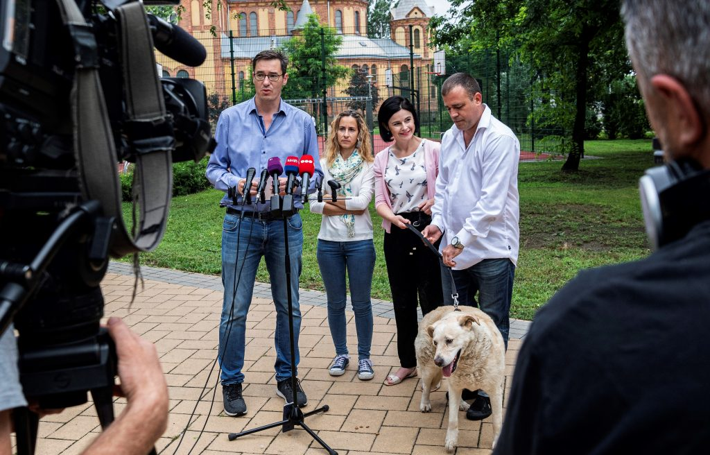 Opposition Mayoral Candidate Karácsony Announces 'Animal Protection Charter' post's picture