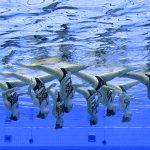 Budapest's European Aquatics Championships Pushed Back to 2021