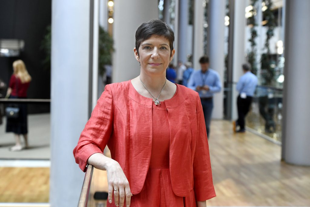 DK MEP Dobrev Vows to Get EP Approval for European Minimum Wage post's picture